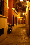Night Alley Royalty Free Stock Photography