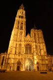 Night Antwerp cathedral Royalty Free Stock Image