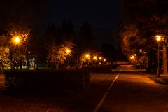 Night autumn alley in the park, illuminated by the warm light of royalty free stock photo