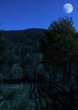 Night autumn landscape Royalty Free Stock Photo