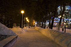 Night avenues Stock Photography