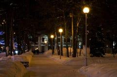 Night avenues Stock Image