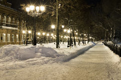 Night avenues Royalty Free Stock Image