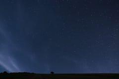 Night background. Night starry sky. Night sky with stars Royalty Free Stock Image