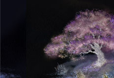 Night background with spring blooming tree on the lake Royalty Free Stock Images