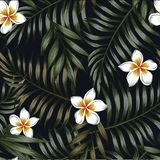 Night background of tropical leaves and flowers seamless pattern Stock Photo