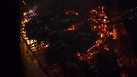 Night barbecue juicy pieces of meat steaming on coals.