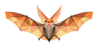 Night Bat in Polygonal Style Stock Photography