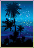 Night beach. Royalty Free Stock Photography