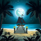 Night beach. A tropical beach at night under starry sky, framed by palm trees Royalty Free Stock Photos