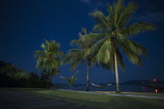 Night beach and palm trees Stock Photography
