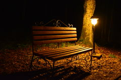Night bench. With the included flashlight Royalty Free Stock Image