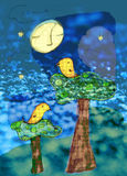 Night birds illustration Stock Photos
