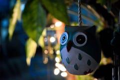 Night birds. Single bird on the branch guard late at night royalty free stock photo