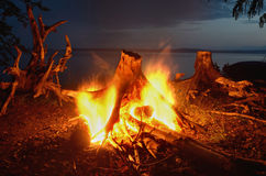 Night bonfire on the river Royalty Free Stock Photos
