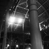 Night botanical architecture Royalty Free Stock Image
