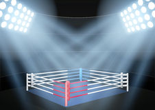 Night boxing prize ring Royalty Free Stock Image