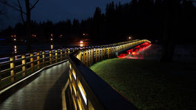 Night bridge and city lights Royalty Free Stock Photos