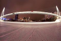 The night bridge. With endurance Royalty Free Stock Image