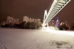 The night bridge. With endurance Royalty Free Stock Photos