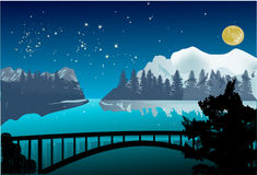 Night bridge in winter landscape Royalty Free Stock Images