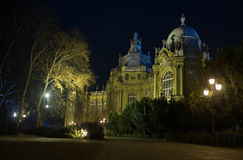 Night Budapest Stock Photos