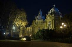 Night Budapest Stock Photos