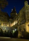 Night Budapest Royalty Free Stock Image