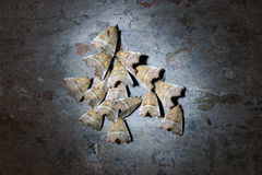 Night butterflies Royalty Free Stock Photography