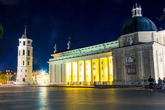 Night cahtedral at Vilnius Stock Images