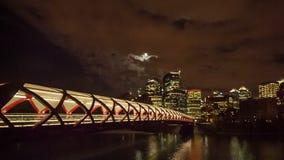 Night Calgary stock footage