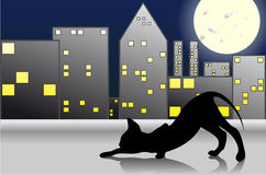 Night Cat. A black cat on the roof against the backdrop of the city at night Royalty Free Stock Image