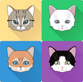 Night Cat Face Circle Icon. Flat Design Vector Illustration with Long Shadow. Witch Animal Symbol. Royalty Free Stock Images