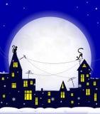 Night, cat, winter Stock Images
