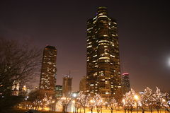 Night at Chicago. A skyscraper overlook a garden in the calm winter night Royalty Free Stock Images