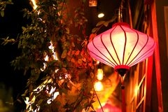 Night Chinese lantern with windows. Chinese lantern at night with windows and some plants and leaves Stock Image