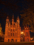 Night church in Vilnius Royalty Free Stock Photography
