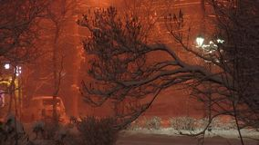 Night city landscape - snowfall in winter the northern city. Urban Landscape in the light of street lamps at night winter - snow-covered trees and bushes on the stock video footage