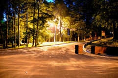 Night city park. Stock Images