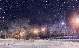 Night city park lights. Night city park under first snow Royalty Free Stock Photography