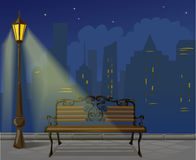Night in the city. Vector illustration Royalty Free Stock Photos