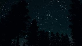 Night clear starry sky in forest 3d realistic footage