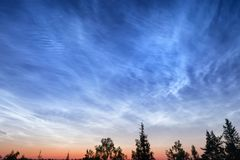 Night cloudy sky over deep forest. Abstract outdoor scene at sunset. South Karelia, Russia royalty free stock photos