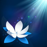 Night cosmic flower vector background Stock Image