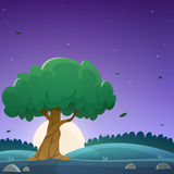 Night Countryside Landscape Royalty Free Stock Photos