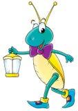 Night cricket Royalty Free Stock Image