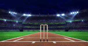 Night cricket field scene with moving spotlight shine and wooden wicket