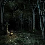 Night in the dark forest Royalty Free Stock Photography