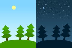 Night and day scenes: fir trees forest under sun and moon, vector