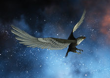Night Eagle Stock Images